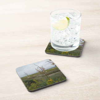 Beach Clouds and Wildflowers Drink Coaster
