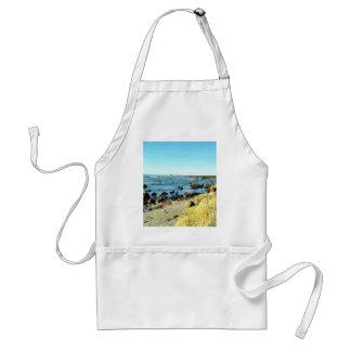 Beach Coast In Monterey Ocean Water Sea Aprons