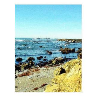 Beach Coast In Monterey Ocean Water Sea Postcard
