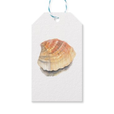 Beach Themed Beach Cockle Sea shell, yellow and orange Gift Tags