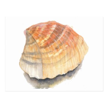 Beach Themed Beach Cockle Sea shell, yellow and orange Postcard