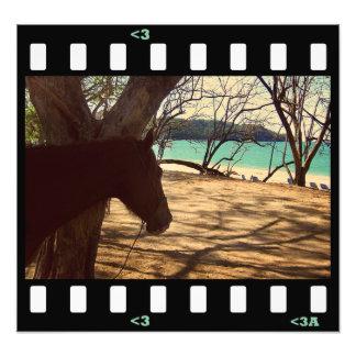 beach- costa rica photo print