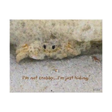 Beach Themed Beach crab hiding canvas print