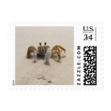 Beach Themed Beach Crab Postage Stamp