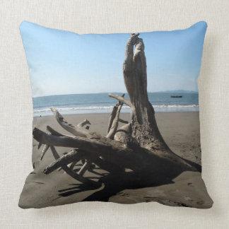 Beach cushion throw pillows