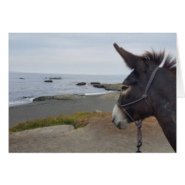 Beach Donkey Contemplates Pacific Ocean Card