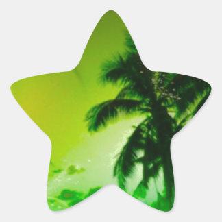 beach dreams green star sticker