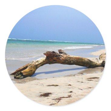 Alleycatshirts Beach drift wood classic round sticker