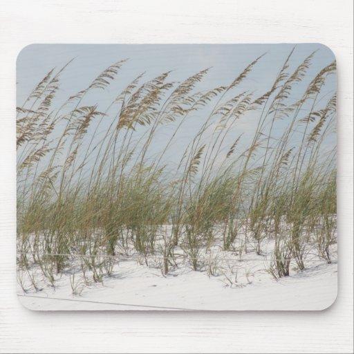beach dune grass American summer Mouse Pad