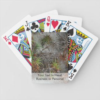 beach dune plants sand in Florida Bicycle Playing Cards