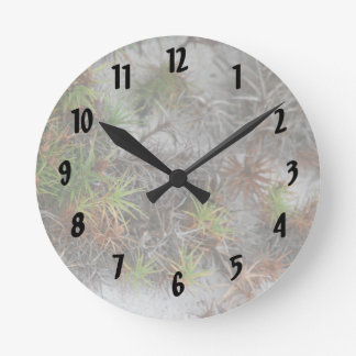 beach dune plants sand in Florida Round Wall Clocks
