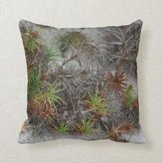 beach dune plants sand in Florida Throw Pillow