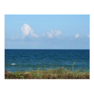 Beach dune with blue water and sky, Florida Postcard