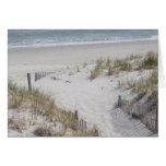 Beach Dunes Card
