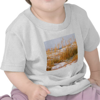 Beach Dunes Dawn Destin Tees