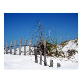 Beach dunes fence on seashore postcard