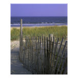 Beach Dunes Print