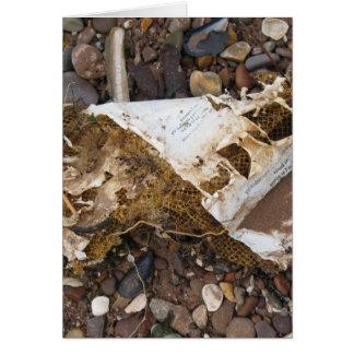 Beach Ephemera Card