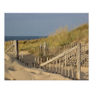 Beach fence in the dunes poster