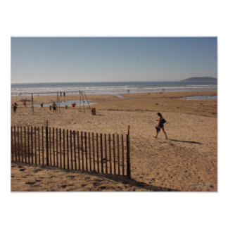 Beach Fence Posters