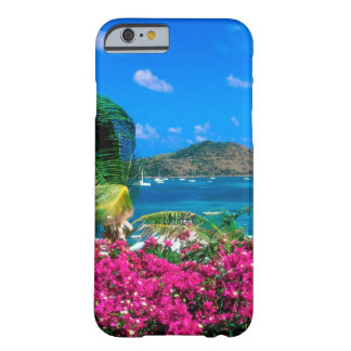 Beach French Cul De Sac Saint Martin Barely There iPhone 6 Case