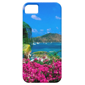 Beach French Cul De Sac Saint Martin iPhone SE/5/5s Case