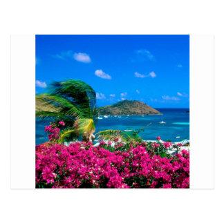 Beach French Cul De Sac Saint Martin Postcard