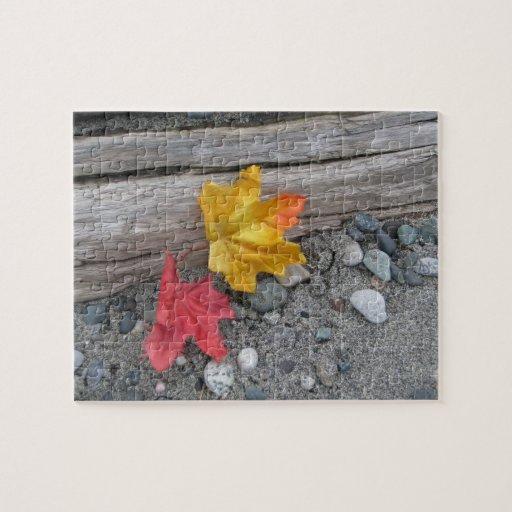 Beach Garden Jigsaw Puzzle
