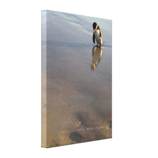 Beach Going Penguin Canvas Print