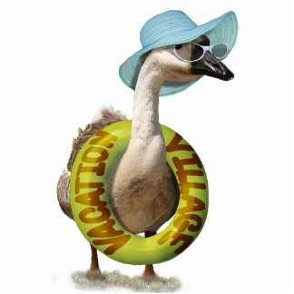 Beach Goose  with Summer Hat & Sunglasses Cutout