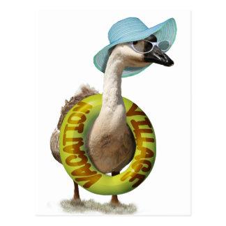 Beach Goose  with Summer Hat & Sunglasses Postcard