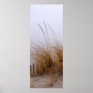 BEACH GRASS 5 POSTER