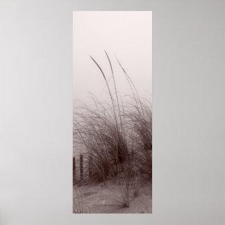 BEACH GRASS sepia toned Poster