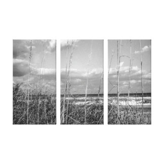 Beach Grass Stretch Canvas Print