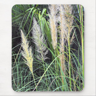 Beach Grasses Mouse Pad