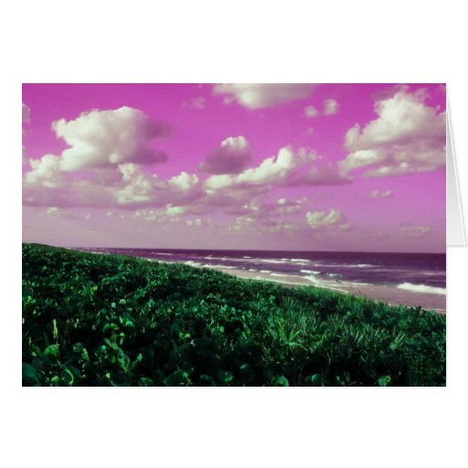 beach greeting card beautiful lovely work