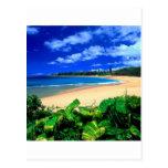 Beach Haena Kauai Hawaii Postcard