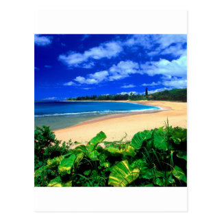 Beach Haena Kauai Hawaii Postcard