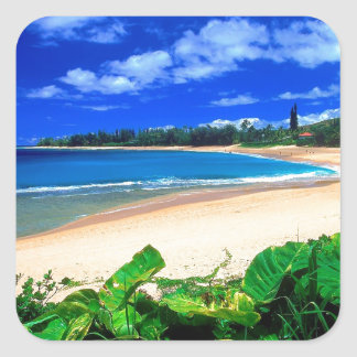 Beach Haena Kauai Hawaii Square Sticker