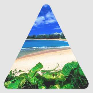 Beach Haena Kauai Hawaii Triangle Sticker