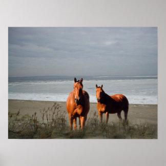 Beach Horses Print