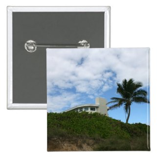 Beach House on Hill with sky and palm tree Pins