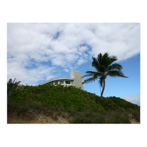 Beach House on Hill with sky and palm tree Postcard