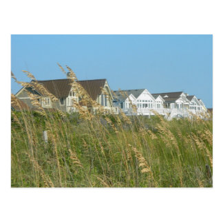 Beach Houses and Beach Grass Postcard