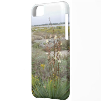 Beach in Autumn iPhone 5C Case