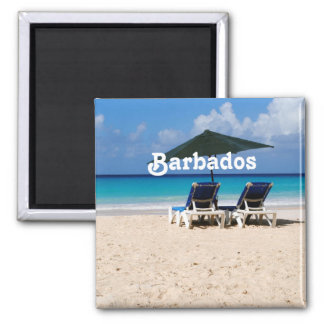 Beach in Barbados Magnets
