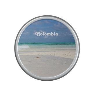 Beach in Columbia Speaker