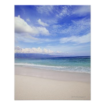 Beach Themed Beach in Hawaii Poster