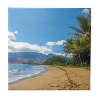 Beach in Hawaii Tile