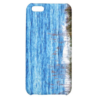 Beach iPhone 5C Covers